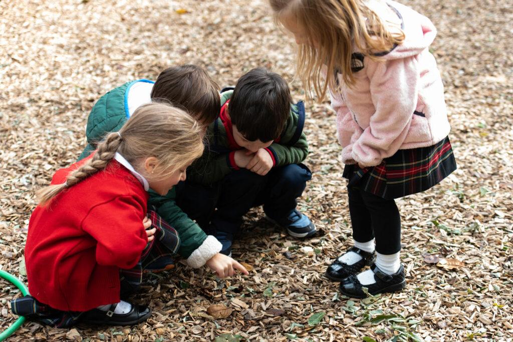 3 year old preschool class