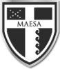logo-MAESA-1 1